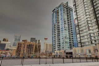 Photo 32: 203 215 14 Avenue SW in Calgary: Beltline Apartment for sale : MLS®# A1092010