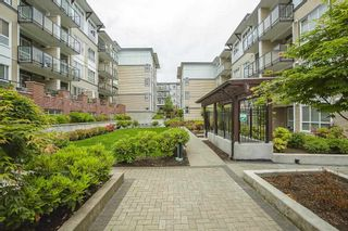 """Photo 27: 205 6468 195A Street in Surrey: Clayton Condo for sale in """"Yale Bloc Building 1"""" (Cloverdale)  : MLS®# R2456985"""