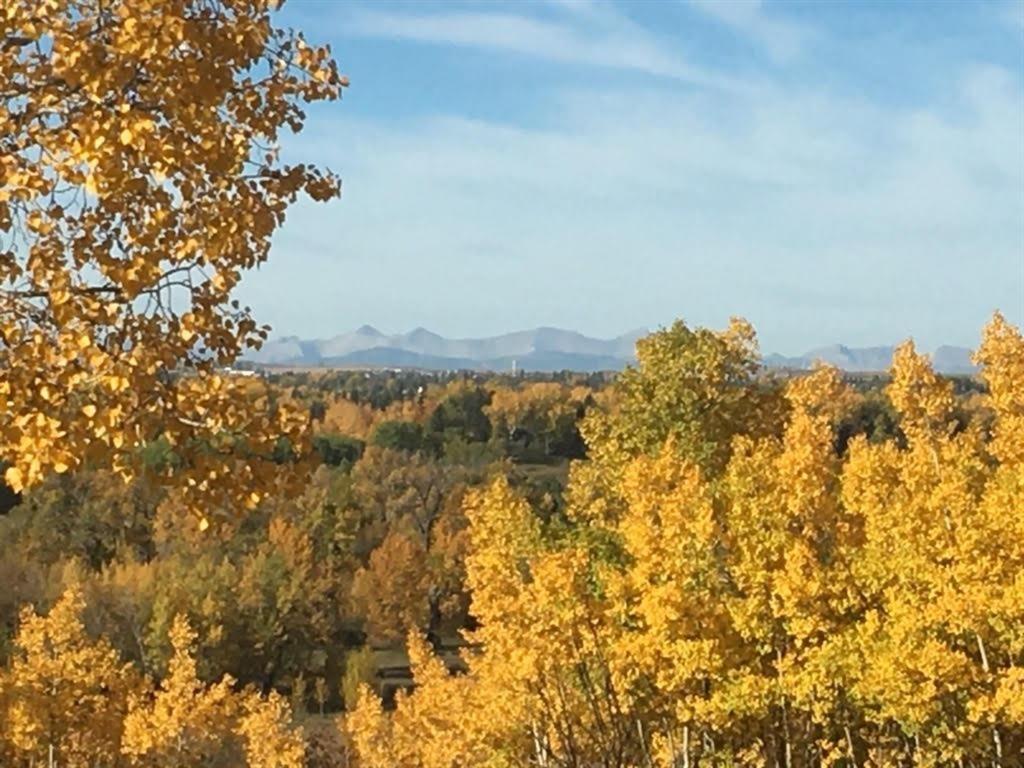 Main Photo: 14308 Parkside Drive SE in Calgary: Parkland Detached for sale : MLS®# A1144542
