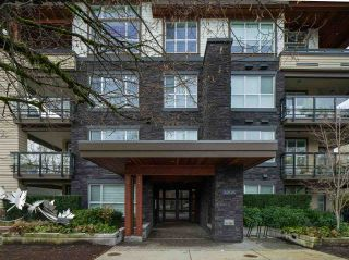 """Photo 28: 101 3205 MOUNTAIN Highway in North Vancouver: Lynn Valley Condo for sale in """"Millhouse"""" : MLS®# R2527517"""