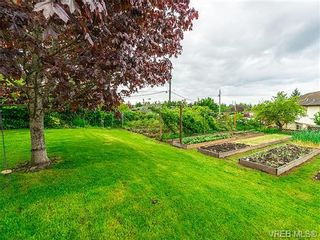 Photo 16: 599 Ridgegrove Ave in VICTORIA: SW Northridge House for sale (Saanich West)  : MLS®# 700992