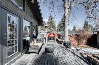 Photo 36: 10408 Fairmount Drive SE in Calgary: Willow Park Detached for sale : MLS®# A1066114