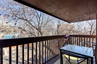 Photo 12: 302 534 20 Avenue SW in Calgary: Cliff Bungalow Apartment for sale : MLS®# A1089543