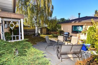 Photo 11: 315 Rundlehill Drive NE in Calgary: Rundle Detached for sale : MLS®# A1153434