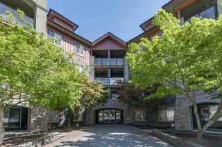 Photo 1: 3116 240 SHERBROOKE Street in New Westminster: Sapperton Condo for sale : MLS®# R2262080