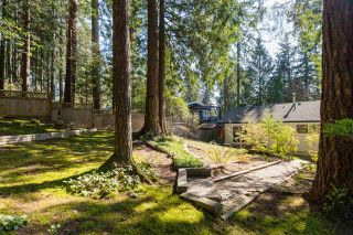 Photo 17: 2408 HYANNIS Drive in North Vancouver: Blueridge NV House for sale : MLS®# R2569474