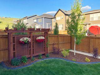 Photo 34: 133 Cranbrook Crescent SE in Calgary: Cranston Detached for sale : MLS®# A1088402