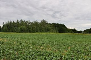 Photo 8: 33538 Rg RD 30: Rural Mountain View County Land for sale : MLS®# C4305650