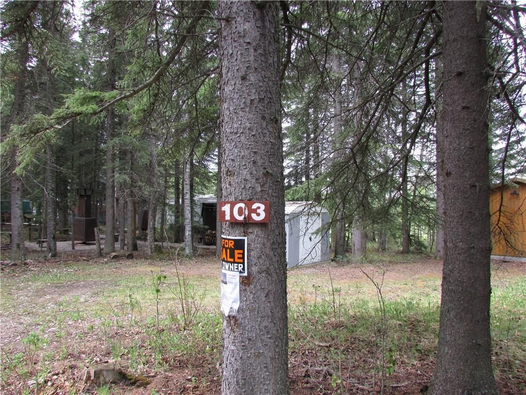 Main Photo: 103, 5227 TWP RD 320: Rural Mountain View County Land for sale : MLS®# C4299948