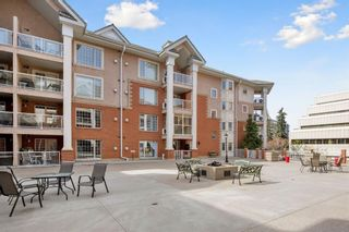 Photo 35: 218 8535 Bonaventure Drive SE in Calgary: Acadia Apartment for sale : MLS®# A1101353