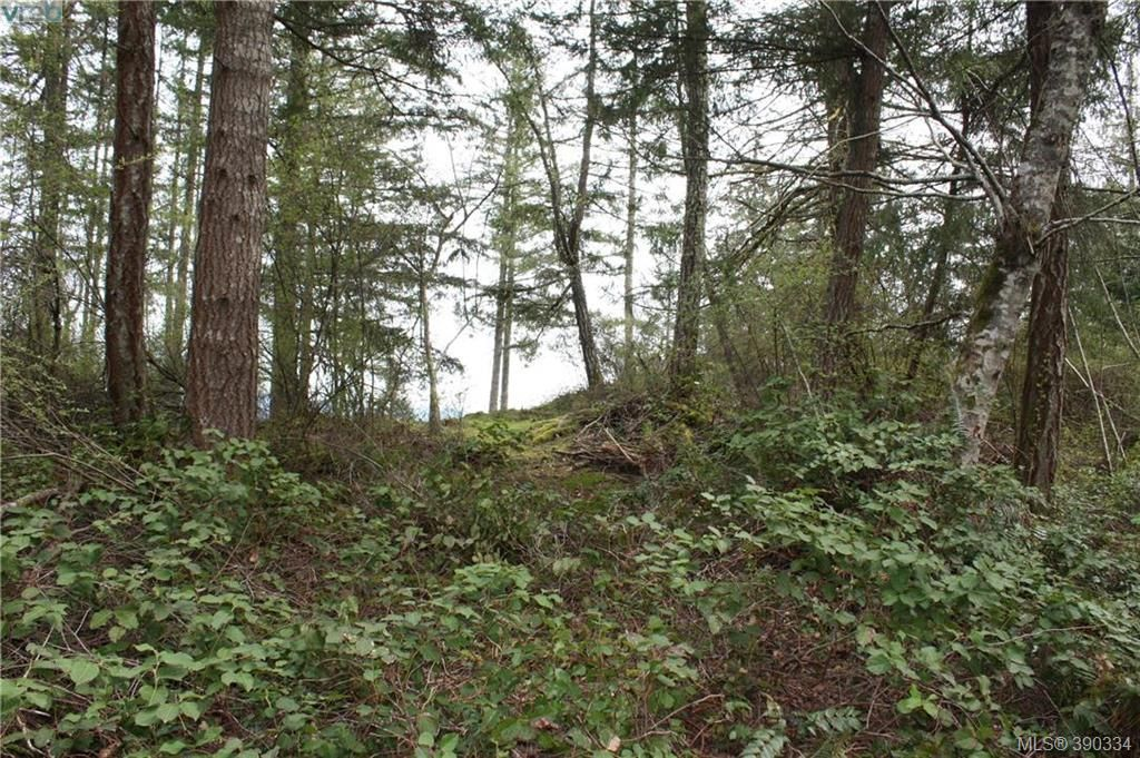 Photo 4: Photos: 414 Stewart Rd in SALT SPRING ISLAND: GI Salt Spring Land for sale (Gulf Islands)  : MLS®# 784416
