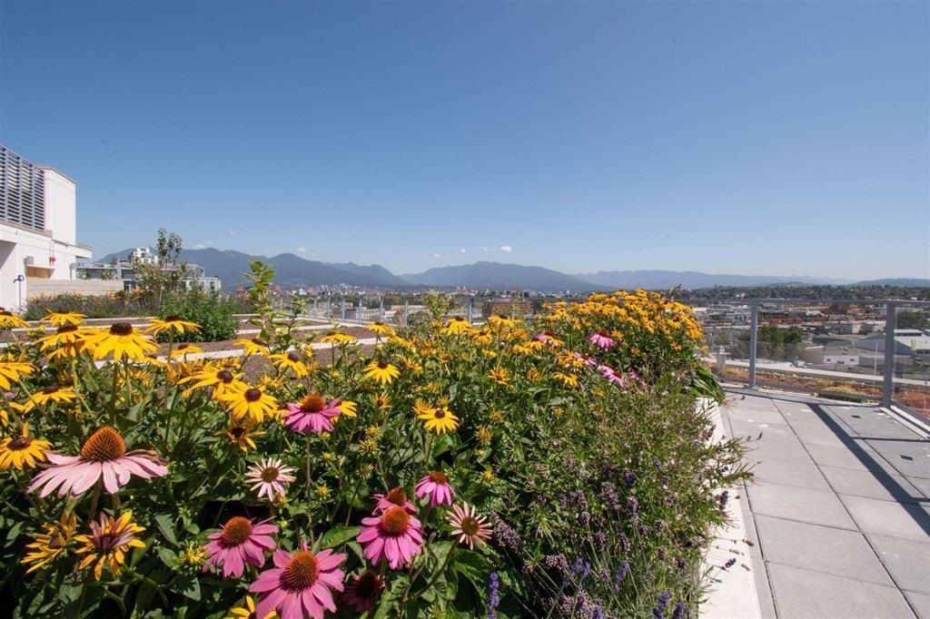 Main Photo: 1119 180 E 2ND Avenue in Vancouver: Mount Pleasant VE Condo for sale (Vancouver East)  : MLS®# R2600606