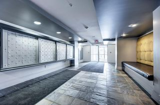 Photo 15: 201 315 24 Avenue SW in Calgary: Mission Apartment for sale : MLS®# A1062504