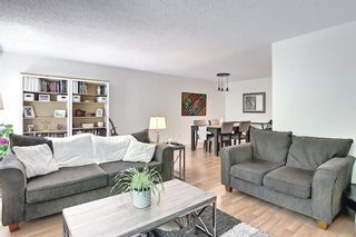 Photo 26: 14 Point Mckay Crescent NW in Calgary: Point McKay Row/Townhouse for sale : MLS®# A1130128