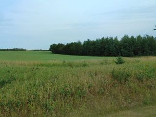 Photo 6: : Rural Beaver County Rural Land/Vacant Lot for sale : MLS®# E4239437