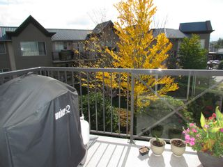 """Photo 17: #321 32725 GEORGE FERGUSON WY in ABBOTSFORD: Abbotsford West Condo for rent in """"UPTOWN"""" (Abbotsford)"""
