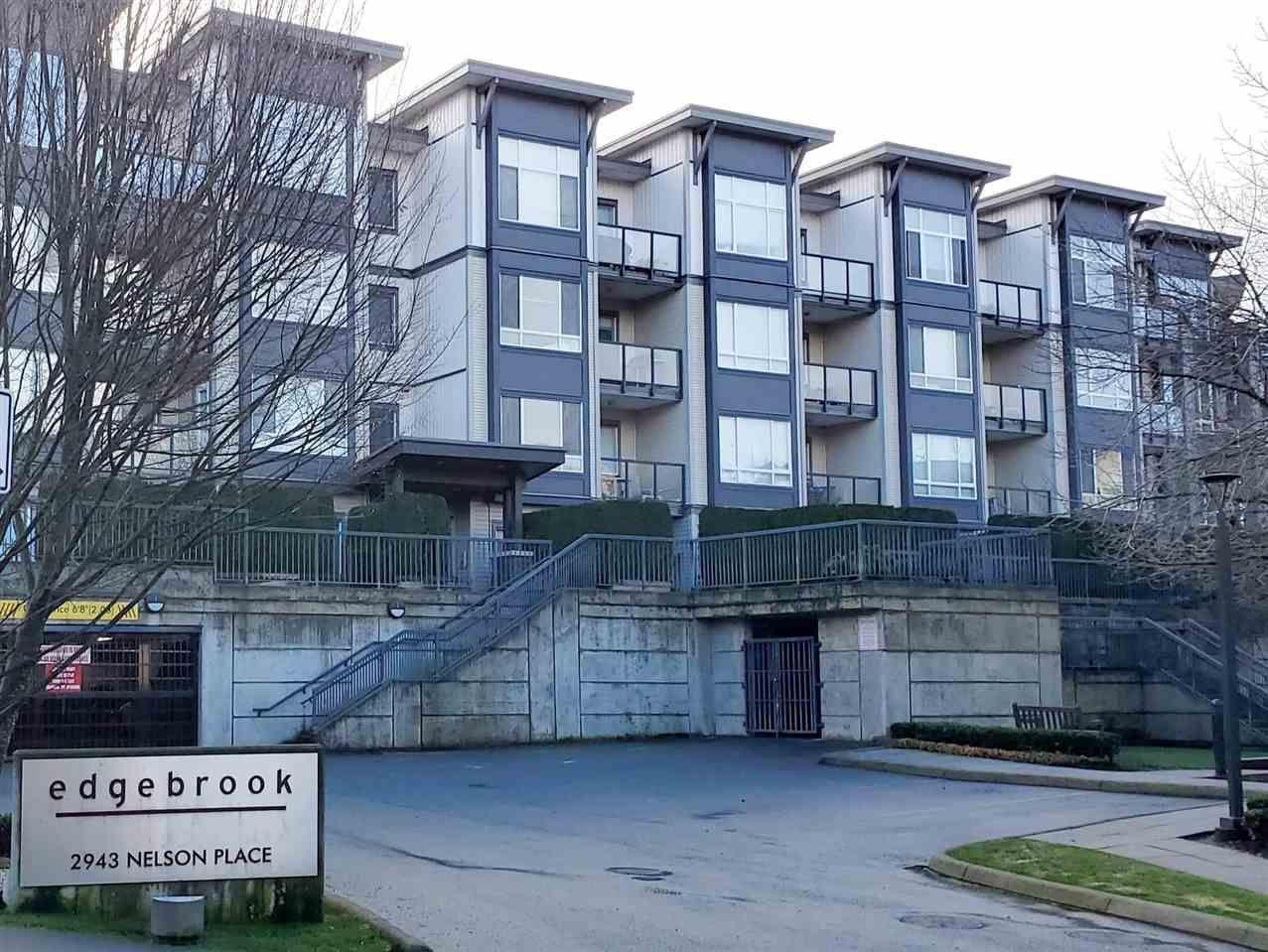 Main Photo: 310 2943 NELSON Place in Abbotsford: Central Abbotsford Condo for sale : MLS®# R2430141