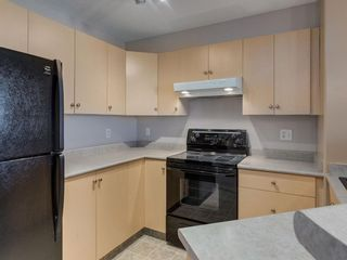 Photo 5: 1312 4975 130 Avenue SE in Calgary: McKenzie Towne Apartment for sale : MLS®# A1046077