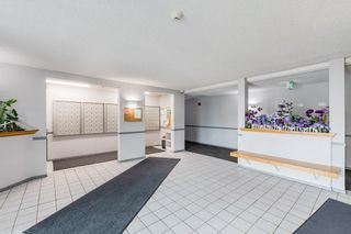 Photo 34: 307 9620 174 Street in Edmonton: Zone 20 Condo for sale : MLS®# E4253956