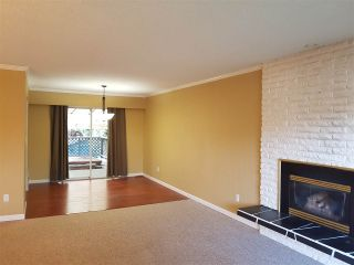 Photo 5: 21684 HOWISON Avenue in Maple Ridge: West Central House for sale : MLS®# R2233098