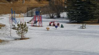 Photo 47: 2603 45 Street SW in Calgary: Glendale Detached for sale : MLS®# A1013600