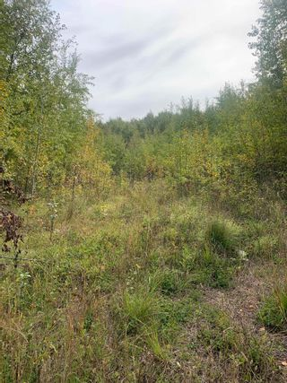 Photo 2: 54419 Range Rd. 14: Rural Lac Ste. Anne County Rural Land/Vacant Lot for sale : MLS®# E4263343