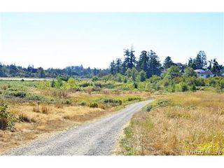 Photo 18: 515 Broadway St in VICTORIA: SW Glanford House for sale (Saanich West)  : MLS®# 712844
