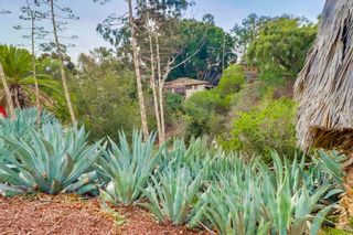 Photo 20: CITY HEIGHTS House for sale : 3 bedrooms : 2642 Snowdrop Street in San Diego