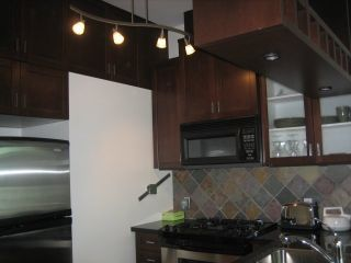 Photo 4: 422 8988 HUDSON Street in Vancouver West: Home for sale : MLS®# V610091