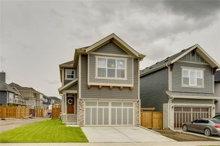 Photo 1: 393 MASTERS Avenue SE in Calgary: Mahogany Detached for sale : MLS®# C4302572