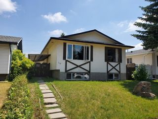 Main Photo: 119 Marlyn Place NE in Calgary: Marlborough Detached for sale : MLS®# A1127132