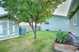 Photo 29: 376 DEERVIEW Drive SE in Calgary: Deer Ridge Detached for sale : MLS®# A1034860