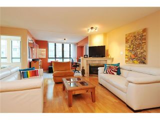 """Photo 6: 301 1088 QUEBEC Street in Vancouver: Mount Pleasant VE Condo for sale in """"VICEROY"""" (Vancouver East)  : MLS®# V974256"""