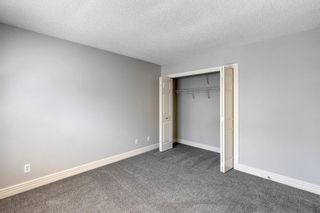 Photo 19: 249 Bridlewood Lane SW in Calgary: Bridlewood Row/Townhouse for sale : MLS®# A1124239