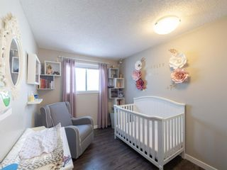 Photo 16: 237 Shawfield Road SW in Calgary: Shawnessy Detached for sale : MLS®# A1069121