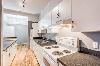 Photo 19: 309 1410 2 Street SW in Calgary: Beltline Apartment for sale : MLS®# A1143810
