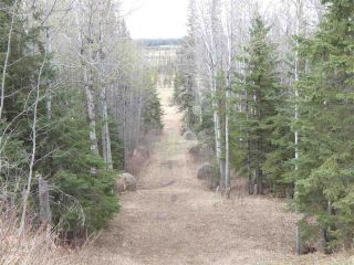 Photo 37: 5314 Township 594 Road: Rural Barrhead County House for sale : MLS®# E4243338