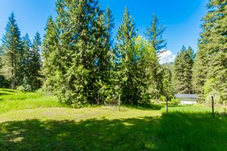 Photo 20: 3977 Myers Frontage Road: Tappen House for sale (Shuswap)  : MLS®# 10134417