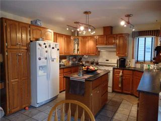 Photo 5: 99 MAPLE Way SE: Airdrie Residential Detached Single Family for sale : MLS®# C3592548