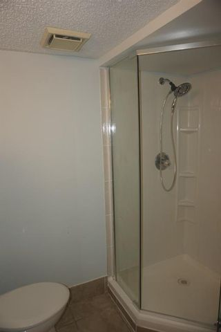 Photo 33: 925 Erin Woods Drive SE in Calgary: Erin Woods Detached for sale : MLS®# A1119483