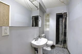 Photo 28: 23 Applecrest Court SE in Calgary: Applewood Park Detached for sale : MLS®# A1079523