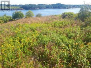 Photo 9: 637 Wellington Road in Blacks Harbour: Vacant Land for sale : MLS®# NB060608
