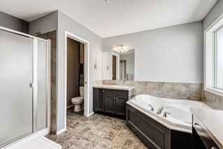 Photo 25: 207 Willowmere Way: Chestermere Detached for sale : MLS®# A1114245