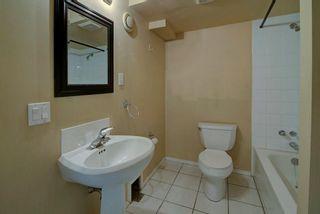 Photo 23: 244 BEDDINGTON Drive NE in Calgary: Beddington Heights House for sale : MLS®# C4195161