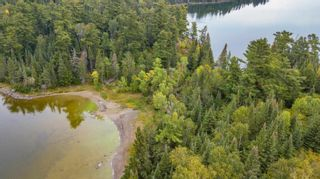 Photo 10: Lot 8 Five Point Island in South of Kenora: Vacant Land for sale : MLS®# TB212085