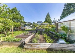 Photo 29: 1579 HAMMOND Avenue in Coquitlam: Central Coquitlam House for sale : MLS®# R2581772