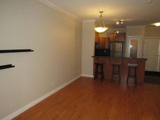 Photo 13: 329 10121 80 Avenue in Edmonton: Zone 17 Condo for sale : MLS®# E4255025