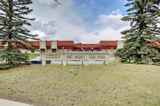 Photo 36: 80 Erin Grove Close SE in Calgary: Erin Woods Detached for sale : MLS®# A1107308
