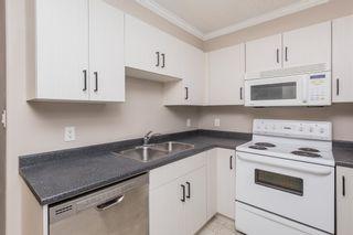 Photo 9: 412 9938 104 Street in Edmonton: Zone 12 Condo for sale : MLS®# E4255024