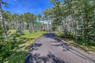 Photo 10: 229051 318 Avenue W: Rural Foothills County Detached for sale : MLS®# A1084268
